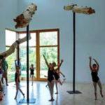 ridgefield-conservatory-of-dance - Dancers