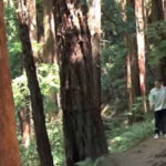 Ridgefield Recreation trail
